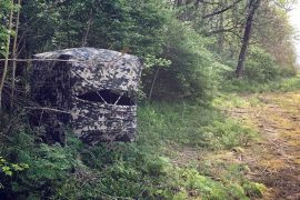 Best Ground Blind For Bowhunting